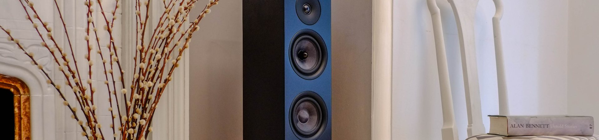 roth speaker